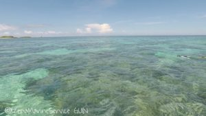 沖縄,伊是名,シュノーケル,サンゴ,SUP