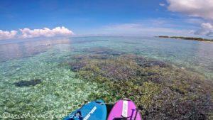 沖縄,伊是名,サンゴ,SUP