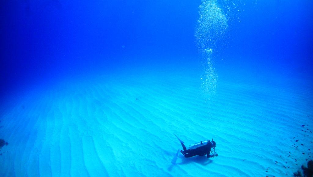 ダイビング,砂地,伊是名,沖縄