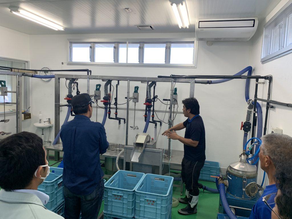 宮古島のアーサ洗浄施設内部
