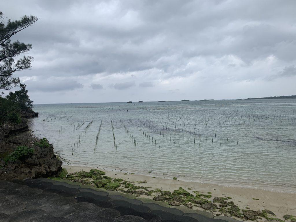 宮古島のアーサ養殖場